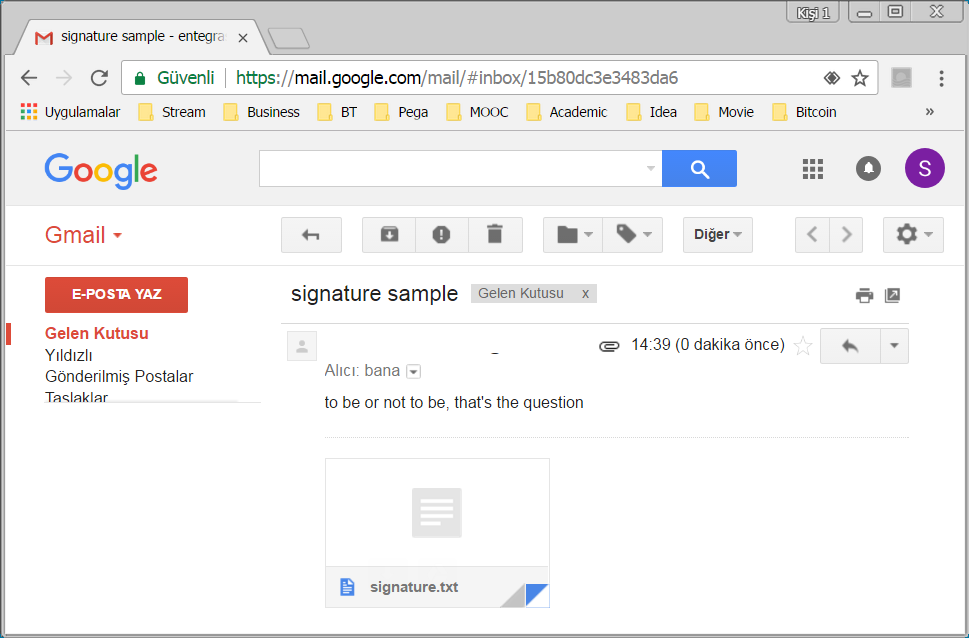 digital-signature-sample